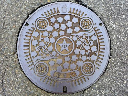 Tanabe Wakayama, manhole cover 4 (和歌山県田辺市のマンホール4)