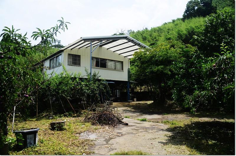 泰安果樹產銷(第十一班)班場所