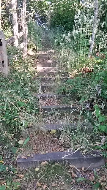 Overgrown death stairs