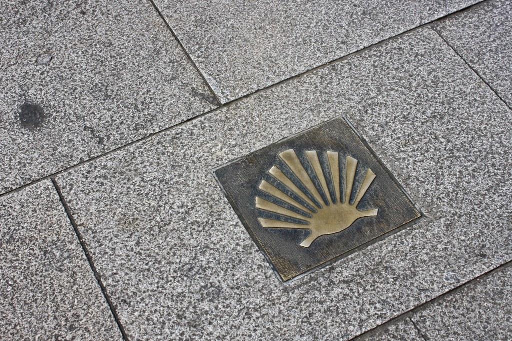 Shell For The Camino De Santiago Concha No Cami 241 O Ingl 233 S