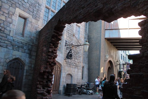 Diagon Alley (43)