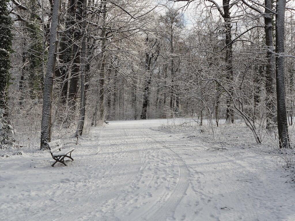 Garten Im Winter großer garten im winter p1052856 olympus digital flickr