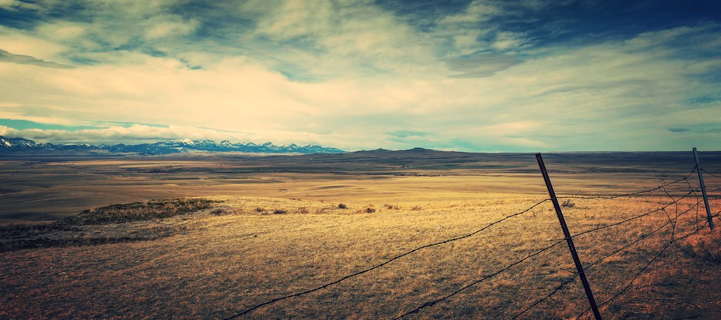 Wide Open Spaces by Tracey Rennie
