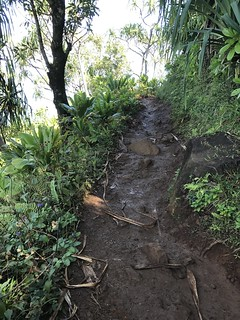 Muddy hike on the Kalalau Trail