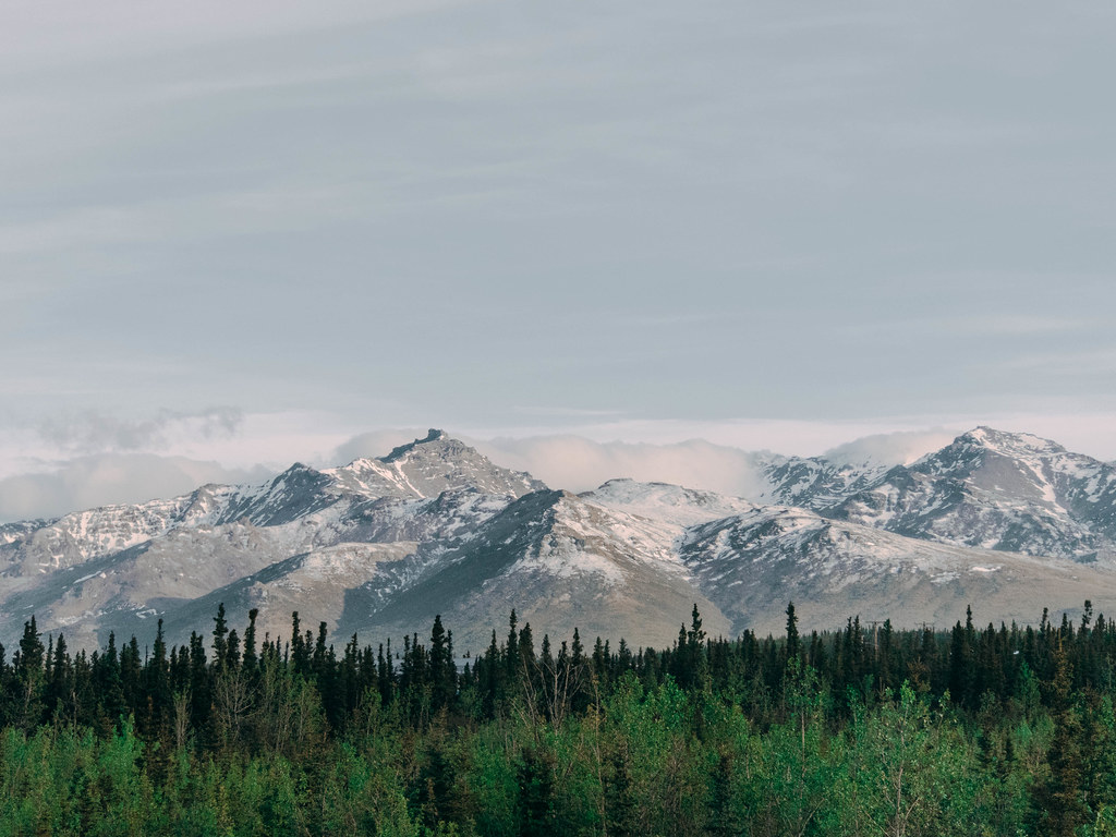 Road to Denali-7