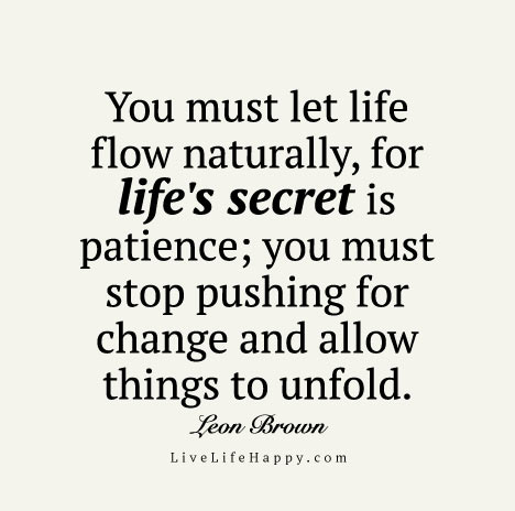 You must let life flow naturally, for life's secret is patience; you must stop pushing for change and allow things to unfold. – Leon Brown