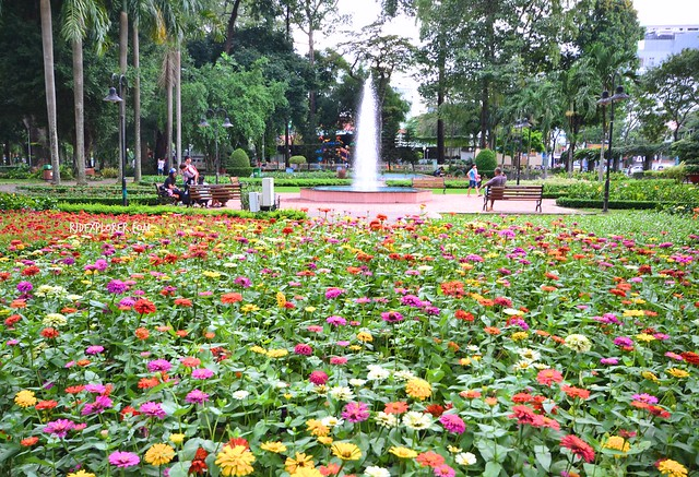 diy saigon city tour tao dan park