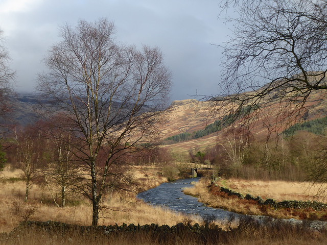 Between Duddon and Dunnerdale Forest