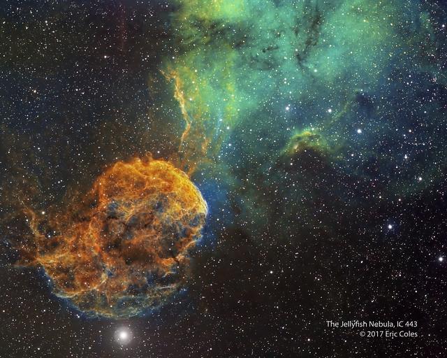 VCSE - Mai kép - Medúza-köd - APOD, E. Coles