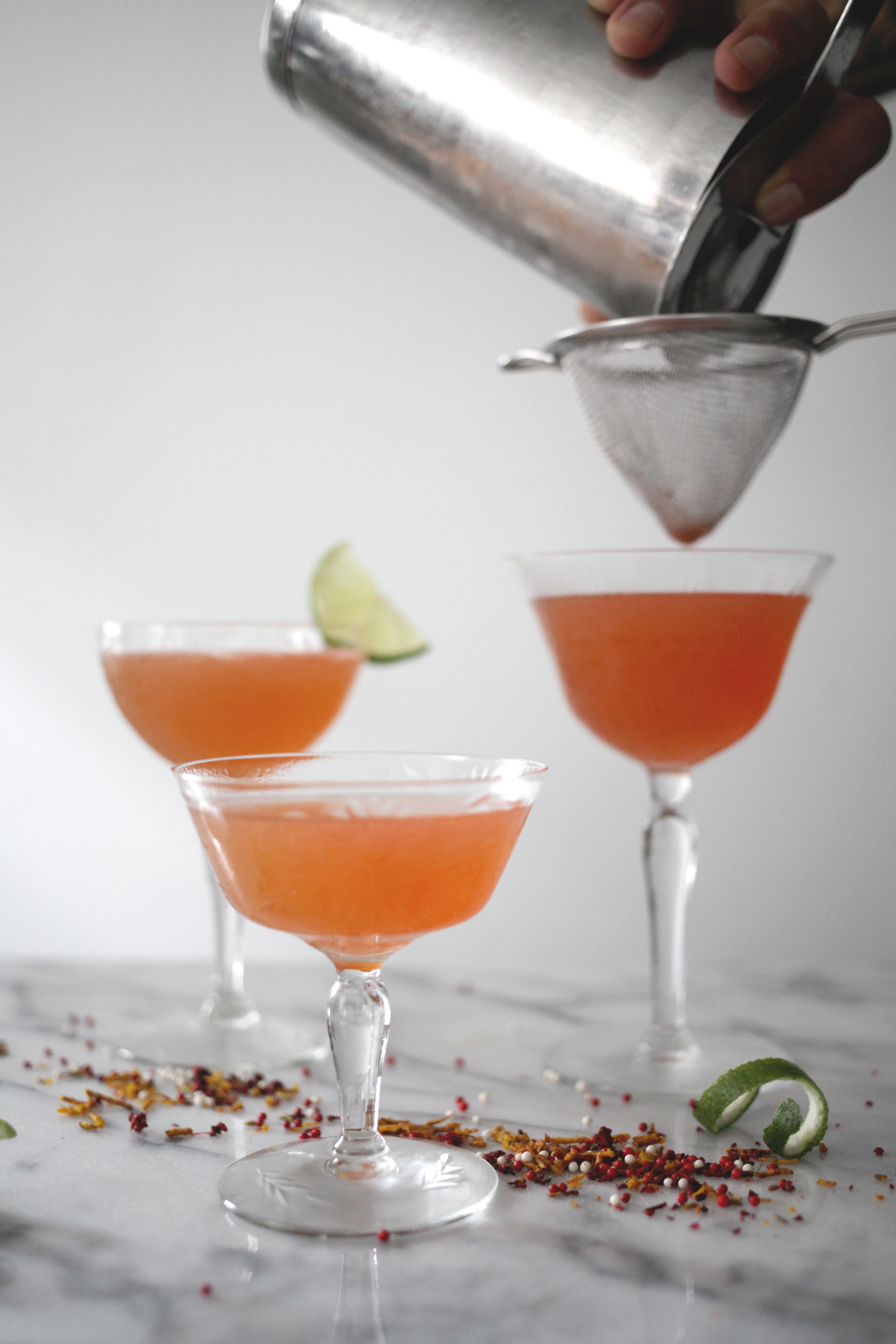 tequila-lime-fennel-cocktail3