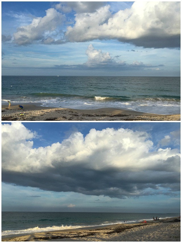 Atlantic Ocean from Orchid Island, Vero Beach