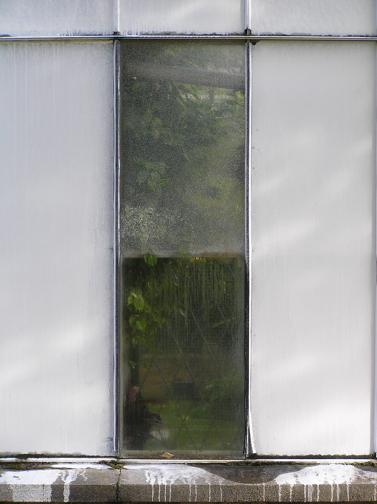 serre jardin des plantes serre au jardin des plantes de flickr. Black Bedroom Furniture Sets. Home Design Ideas