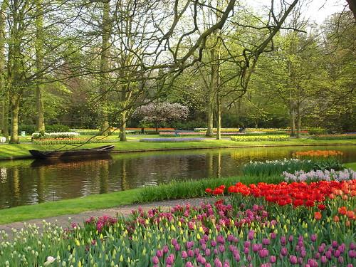 Porque finalmente hoje é quinta, um jardim cheio de flores para todos