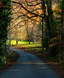 country road | by Cliff Michaels