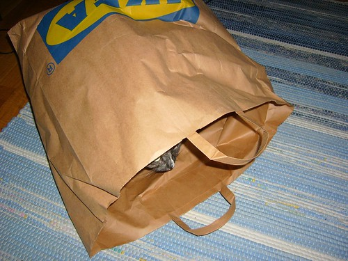 Ikea paper bag | by KurtQ