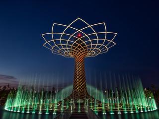 Tree of life #02