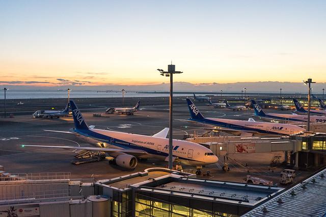 初日の出2017@羽田空港第2旅客ターミナル-9.jpg