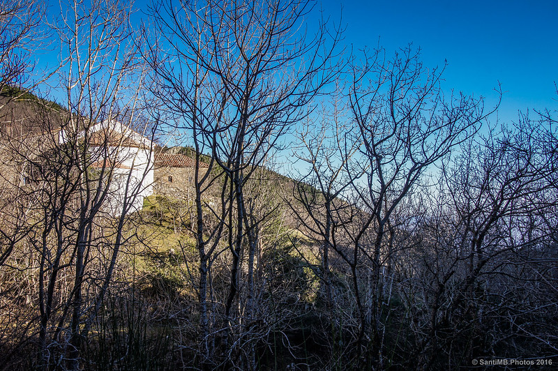 Divisando entre los árboles el Santuari de les Salines