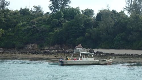 Laying fish traps at Pulau Tekukor