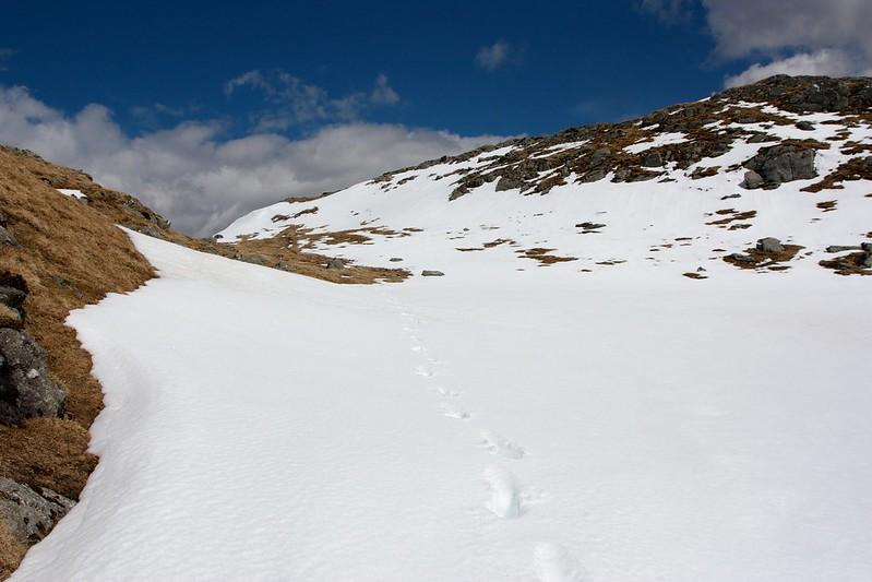 Snow on  Stob an Fhir-Bhogha