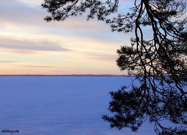 Saimaanranta talvella