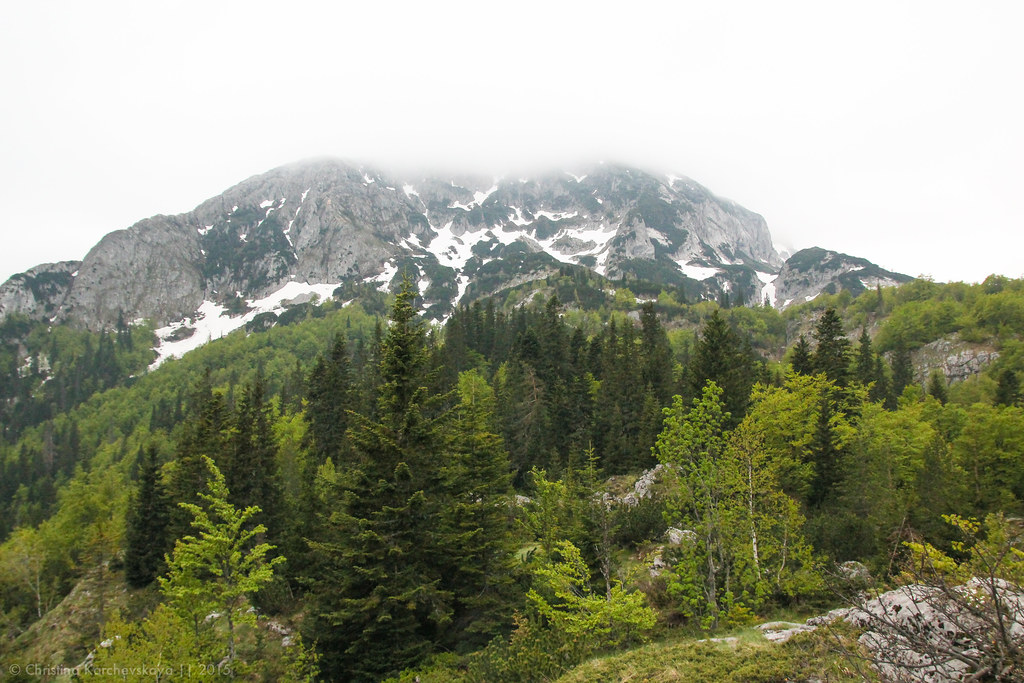 Montenegro [16]: National Park Durmitor