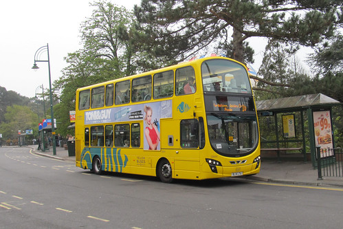 Yellow Buses VGW187 BL14LTA