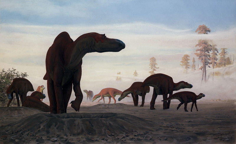 Dinosaur17