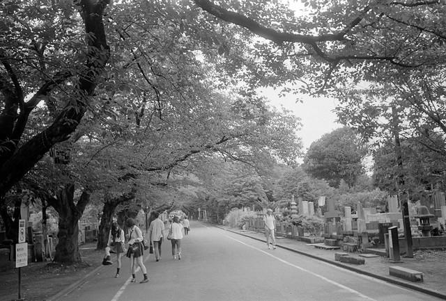 Yanaka-Cemetery