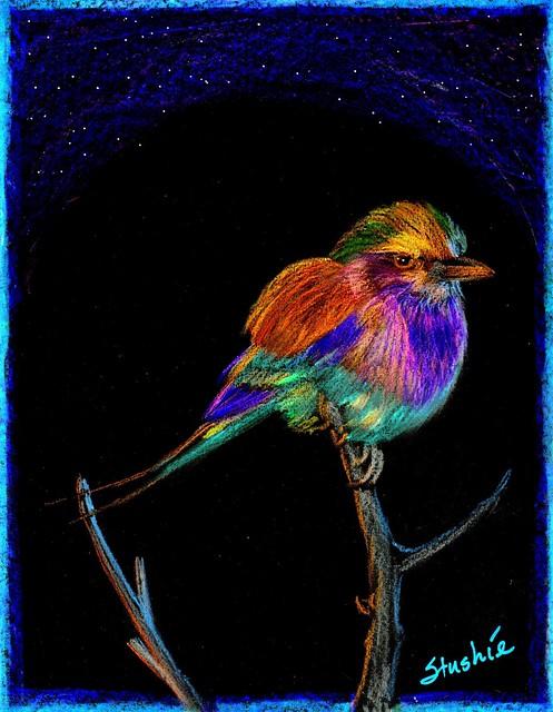 Allyson's Bird