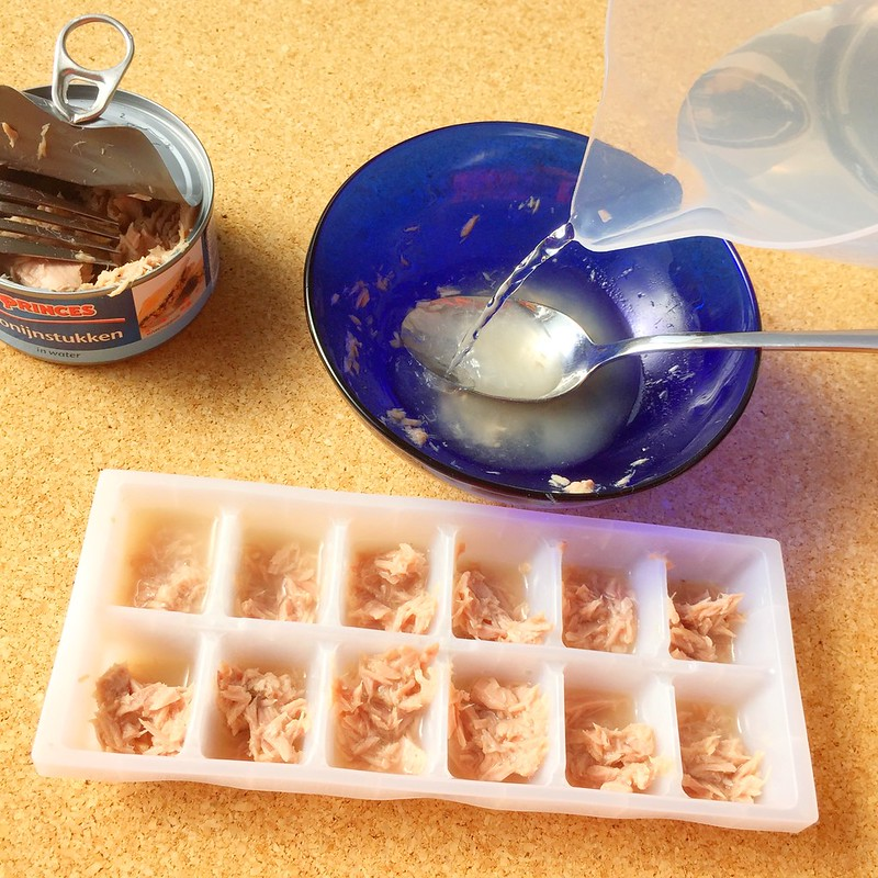 How to make frozen tuna cubes for your cat's summer treats