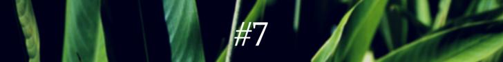 #1(6)