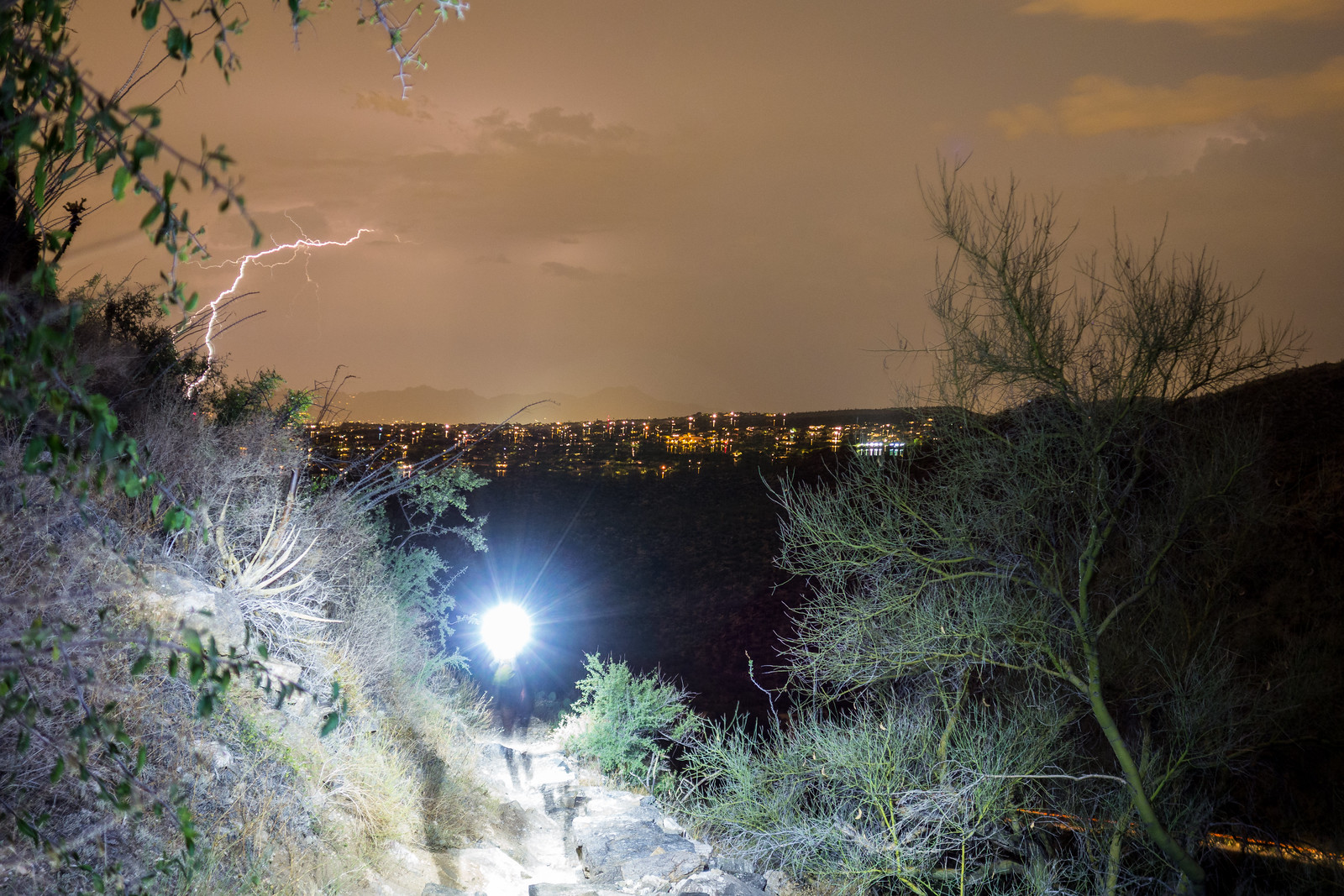 1506 Night in Sabino Canyon