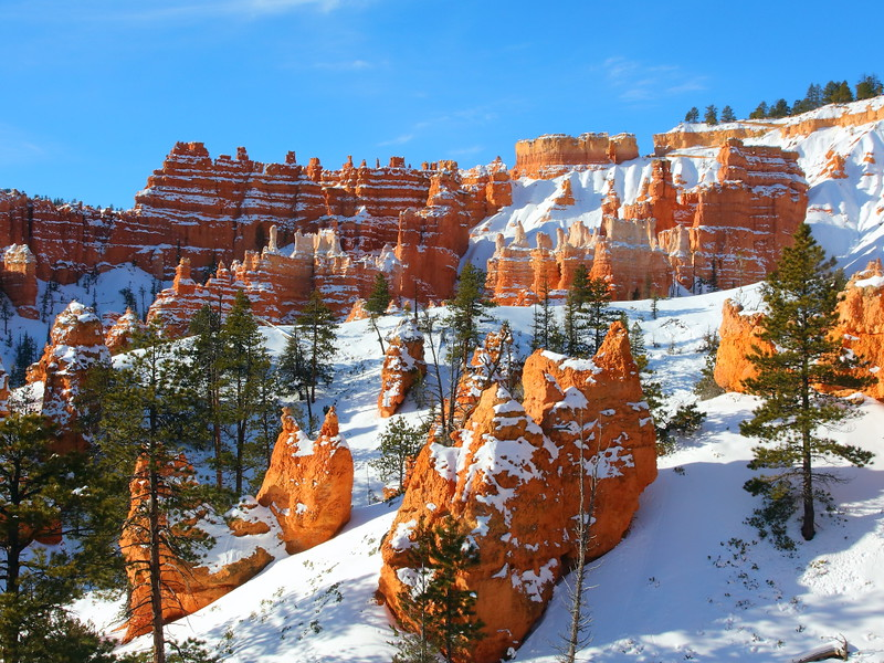 IMG_8699 Queens Garden Trail, Bryce Canyon National Park
