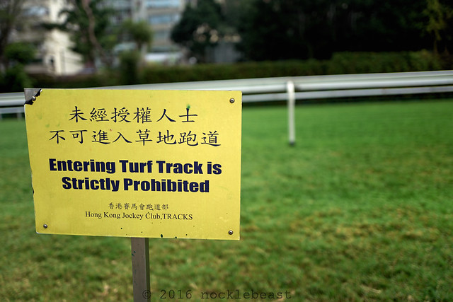 entering turf track is strictly prohibitied