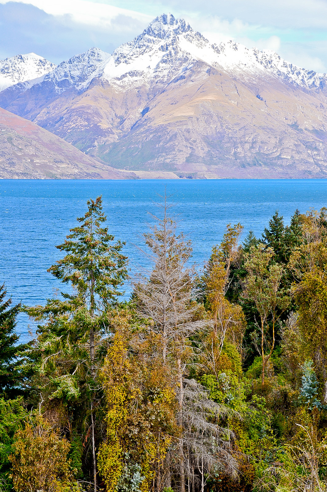 Journey to Glenorchy, New Zealand