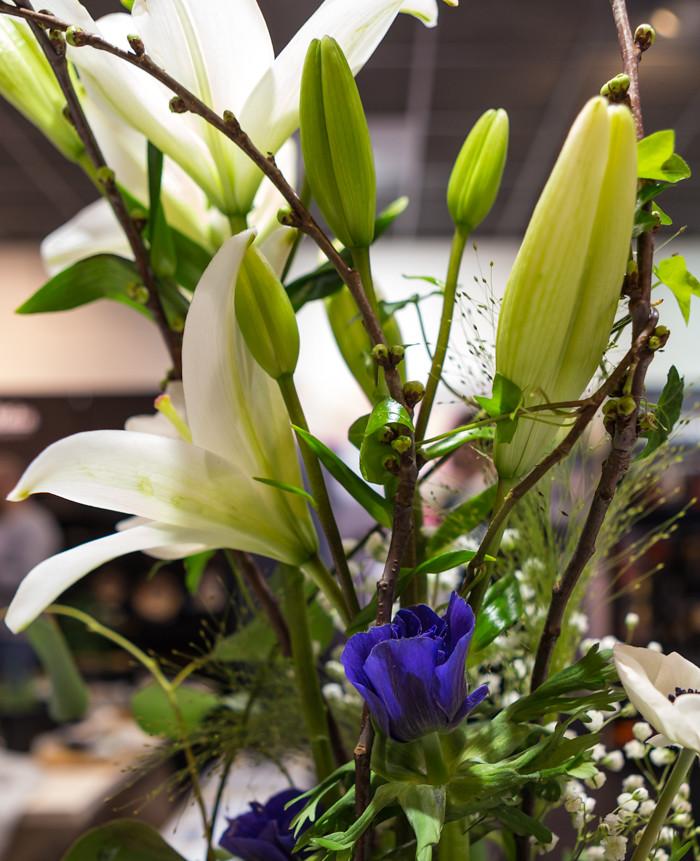 kukkakimppu valkoinen kukka violetti