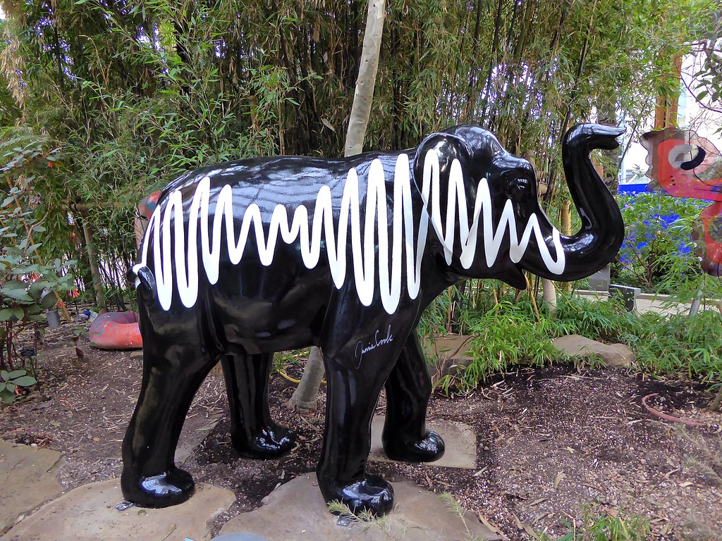 sheffield the winter gardens iconic am elephant won u0027t be u2026 flickr