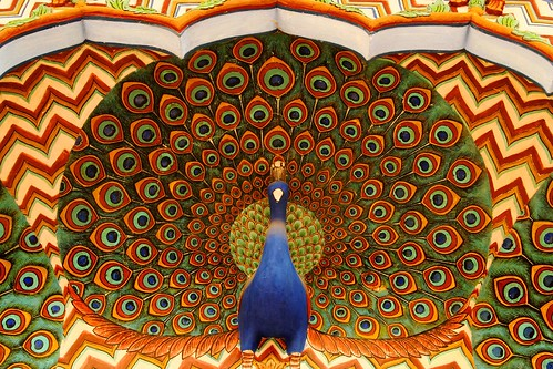 Peacock | by guy_incognito