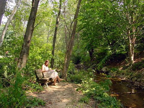 Etonnant ... Asheville Botanical Gardens II | By Kingary