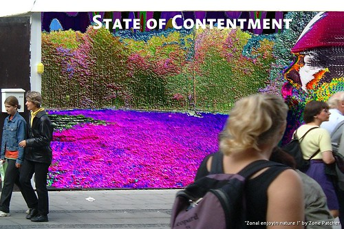 State of Contentment | by Zone Patcher