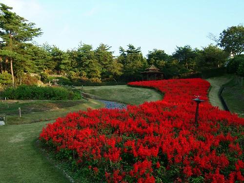 indian garden toby oxborrow flickr