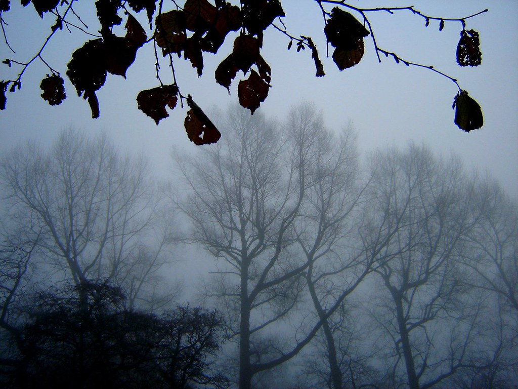 """November"" by Thomas Hood"