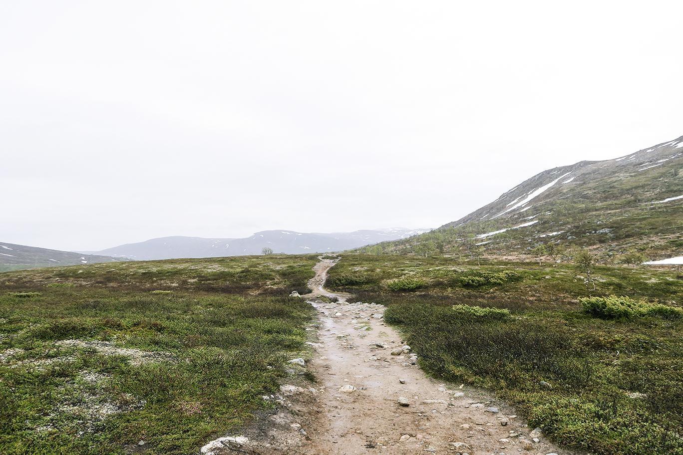 Storulvån www.traningsgladje.se