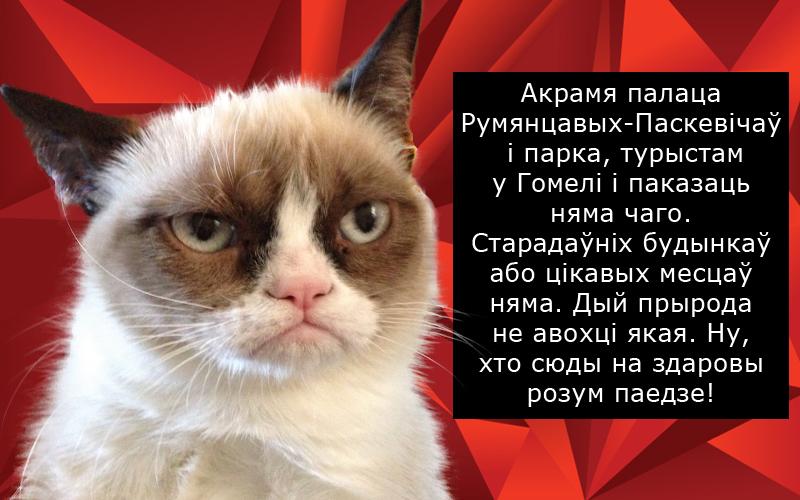 007-злы-кот