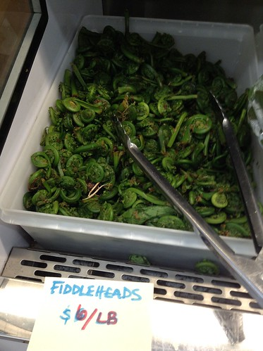 Fiddleheads for sale