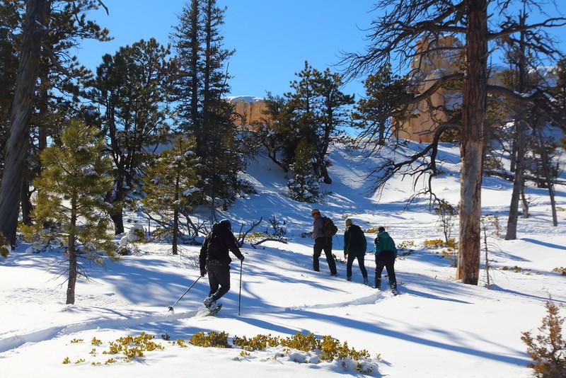 IMG_9104 Ranger-Led Snowshoe Walk