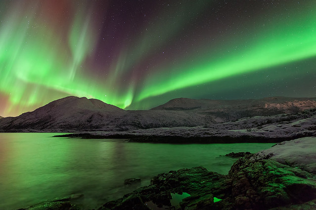 Northern Light Show 4886