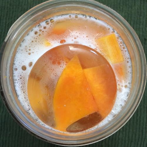 fermenting butternut squash