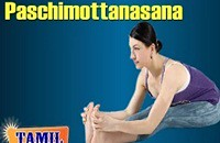 Paschimottanasana For Beauty   Exercise Body Fitness   Treatment, Tips & Cure in Tamil